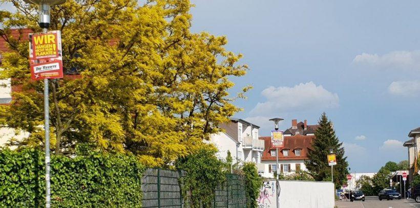 Wahlkampf in Sinsheim