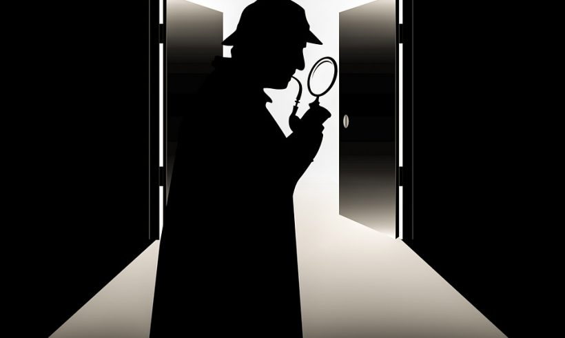 Der dreizehnte Mann – Spitzel, Spalter, Provokateure und nützliche Idioten
